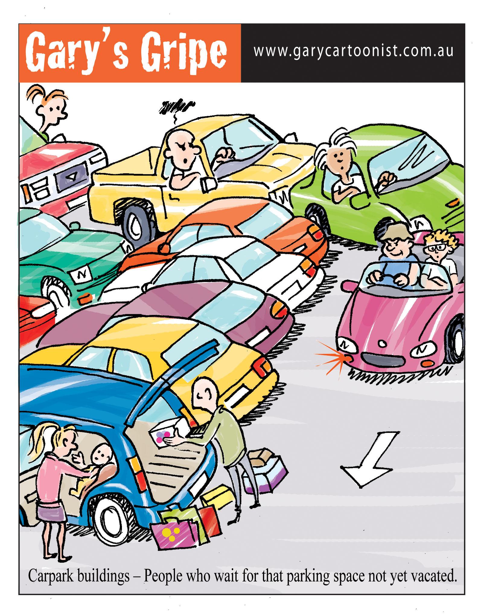 car-park-idiot